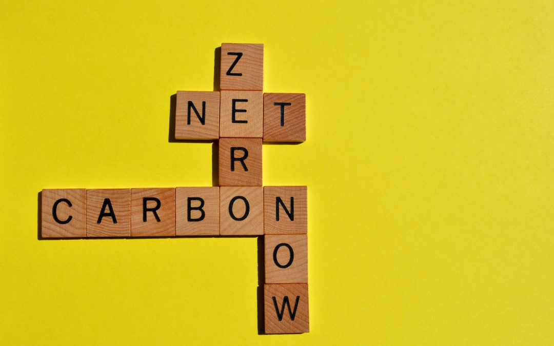 3 real things you can do to achieve net zero for your events